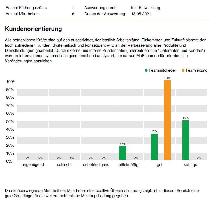 """Musterauswertung DNLA-PWA in der Online-Version - Auswertung nach Bereichen: Hier für den Bereich """"Kundenorientierung""""."""