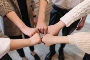 DNLA-Teamanalyse und DNLA PWA online: Teams und Unternehmen analysieren, entwickeln und stärker machen!